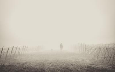 The Fog of (Marketing) Language