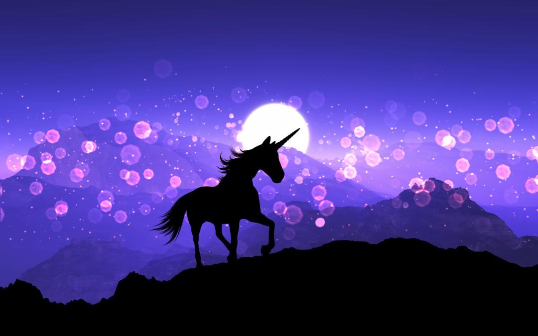 The Unicorn Craze